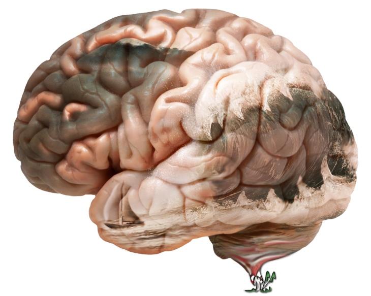 Waves in my brain by NZFIEND.WORDPRESS.COM