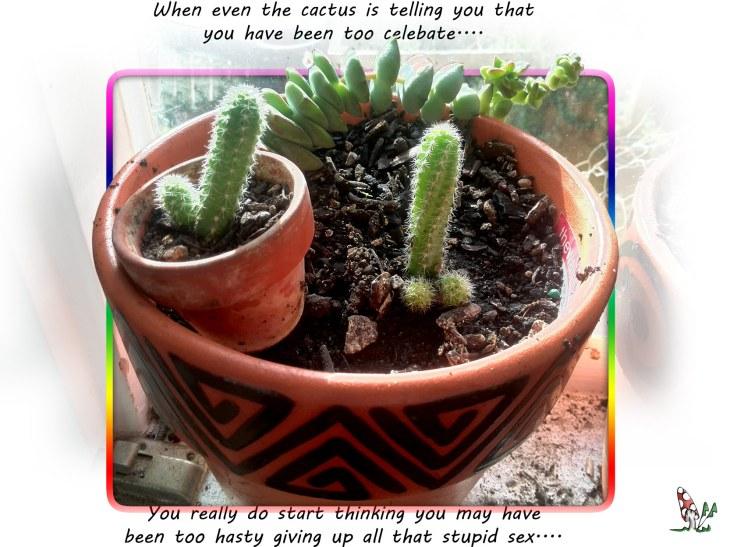 sex_cactus